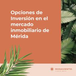 Opciones de Inversión en el mercado inmobiliario de Mérida_fb2