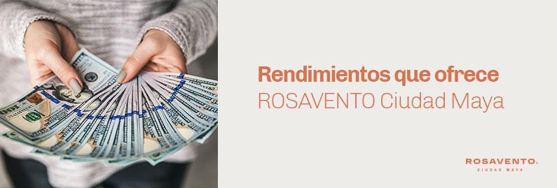 Rendimientos-de-ROSAVENTO_banner